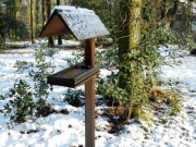 20 Vakantiehuis in het bos van Appelscha
